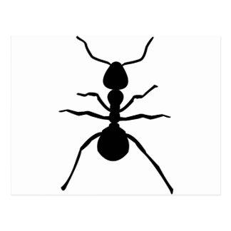 big black ant icon postcard