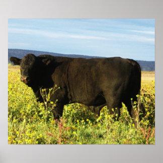 Big Black Bull in Sunflowers - Toro - Taurus Poster