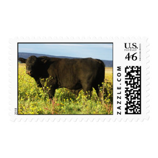 Big Black Bull in Wildflowers - Toro - Taurus Stamps