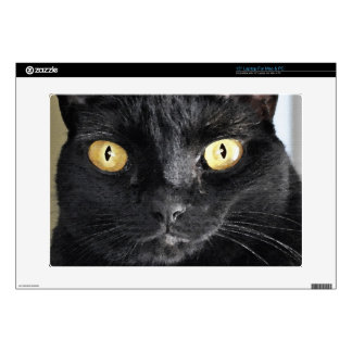 "Big Black Cat's Eyes Pet-lover's Electronics Skin Decal For 15"" Laptop"
