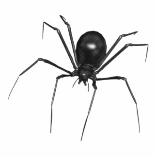 Big Black Creepy 3D Spider Cutout