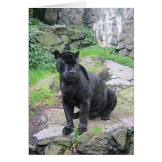 Big Black Jaguar Cat on Sitting on Rock Greeting Card