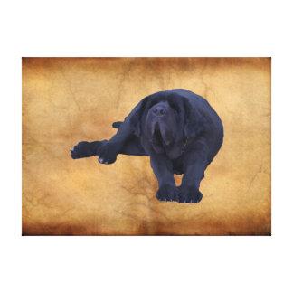 Big, Black Newfoundland Dog Art Canvas Print