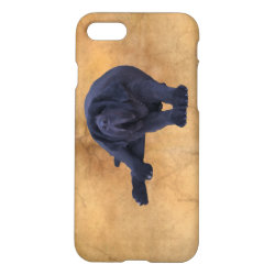 Big, Black Newfoundland Dog Art iPhone 8/7 Case