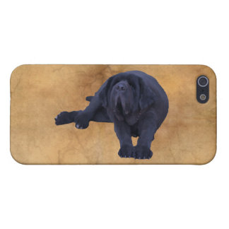 Big, Black Newfoundland Dog Art Cover For iPhone 5/5S