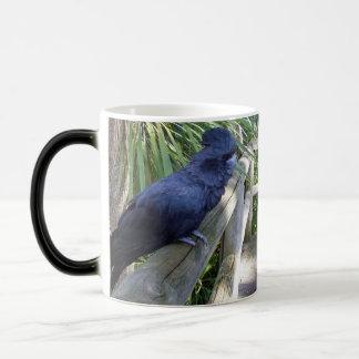 Big_Black_Parrot,_Sitting_On_Fence_Magic_Morp_Mug. Magic Mug