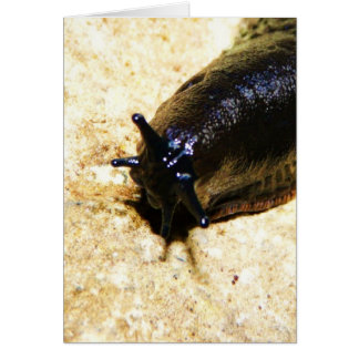 Big Black Slug Card