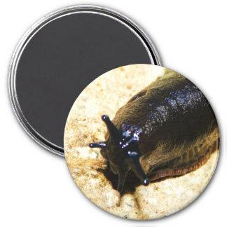 Big Black Slug Magnet