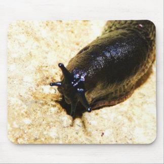 Big Black Slug Mouse Pad