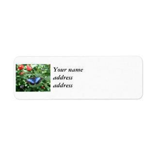 Big Blue Butterfly 2 Label
