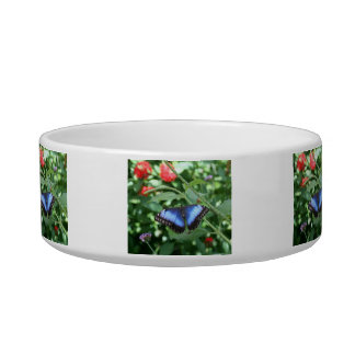 Big Blue Butterfly 2 Cat Food Bowl