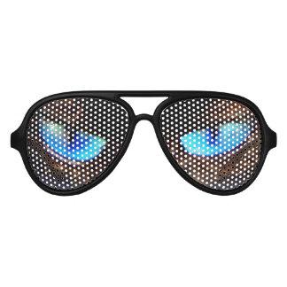 Big blue cats eyes siamease aviator sunglasses