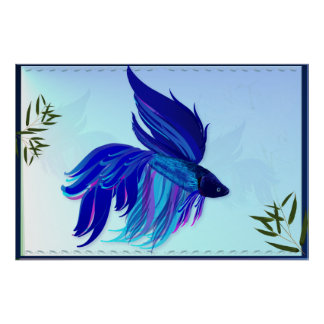 Big Blue Siamese Fighting Fish Posters