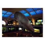 Big Blue Whale Greeting Card