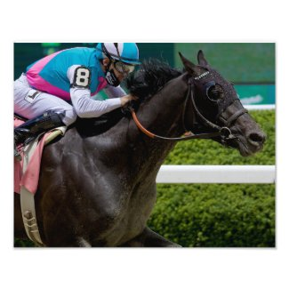 Big Bobby Breaking his Maiden at Belmont Park Photo Print
