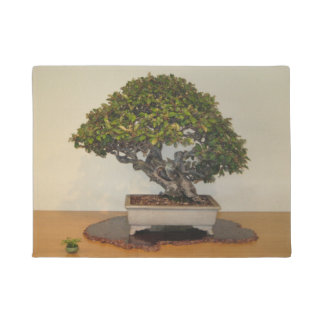 Big Bonsai Little Bonsai Washington DC Arboretum Doormat