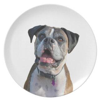 Big Boxer Dog Dinner Plate