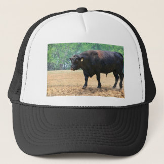 Big Boy Black Anqus Bull Trucker Hat