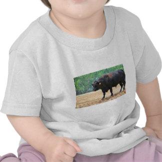Big Boy Black Anqus Bull Tee Shirt