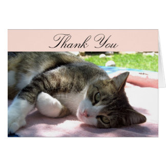 Big Boy Cat Thank You Card