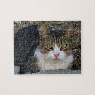 Big Boy Green-Eyed Cat Puzzle
