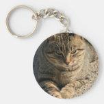 Big Boy Tabby Tom Cat Keychains