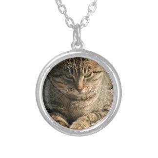 Big Boy Tabby Tom Cat Pendant