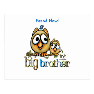 Big Brother - Baby Bro Owls Postcard