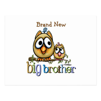 Big Brother - Baby Sis Owls Postcard