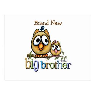 Big Brother - Baby Sis Owls Postcard