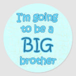 Big Brother Blue Stickers