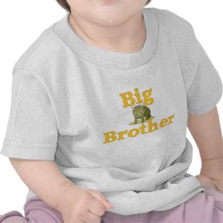 Big Brother Dinosaur 3 Tees