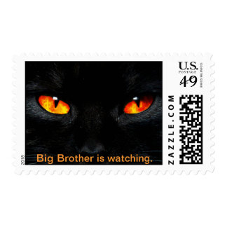 Big Brother is watching Postage Stamp