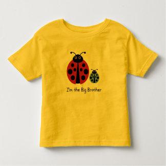 Big Brother Ladybird Shirt