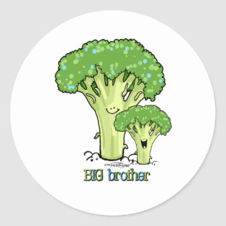 Big Brother - little sibling stickers