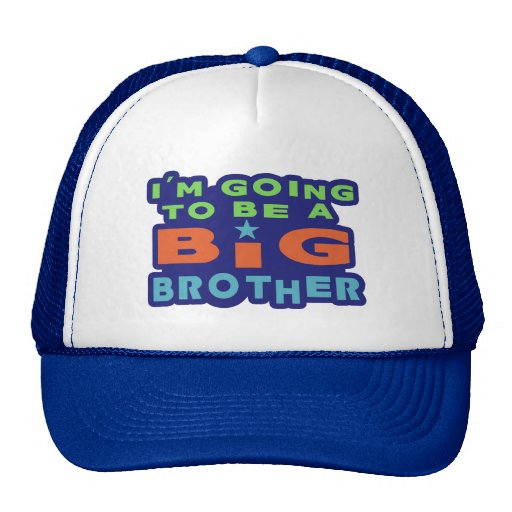 Big Brother Mesh Hat