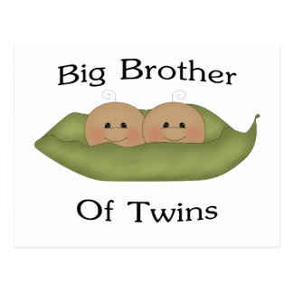 Big Brother Of Twins Post Cards