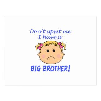 Big Brother! Postcard