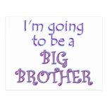Big Brother/Sister Postcard