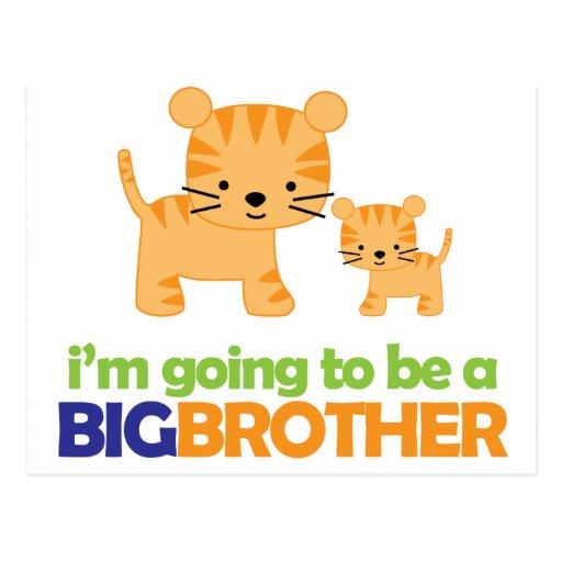 Big Brother Tiger T-shirt Pregnancy Announcement Postcard
