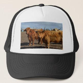Big Brown Highland Cows,, Trucker Hat