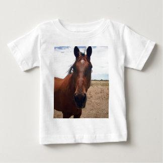 Big_Brown_Horse,_ Shirt