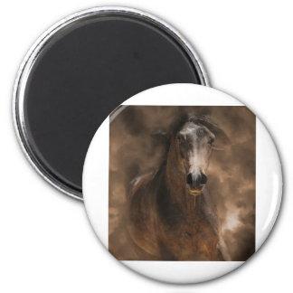 Big Brown Magnet