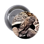 big brown turtle painting 2 inch round button