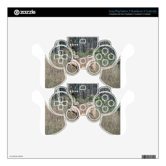 Big buck by james potvin PS3 controller decal