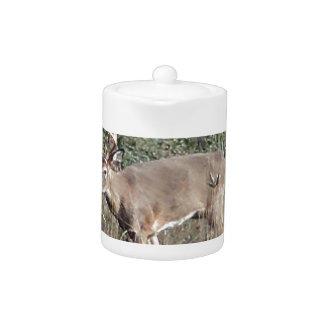 Big buck by james potvin teapot