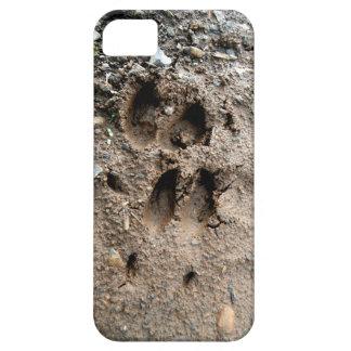 Big Buck iPhone 5 Case