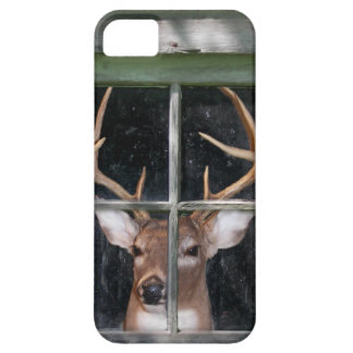 Big Buck in window iPhone 5 Cover