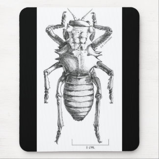 BIG BUG Mousepad
