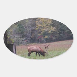 Big Bull Elk in the Autumn purple grass Oval Sticker